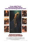 Man Called Horse, A (1970)