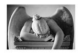 Angels (B&W Photography)