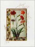 Flori Florilegium