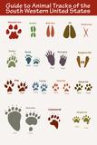 Animal Tracks & Paw Prints