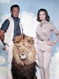Lion, The (1962)