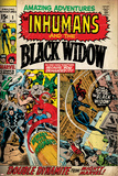 Black Widow (Marvel Collection)