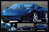 Exotic Sports Cars