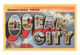 Ocean City (MD)