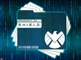 S.H.I.E.L.D. (Marvel Collection)