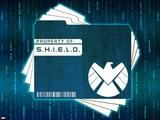 S.H.I.E.L.D. (Marvel Collection)
