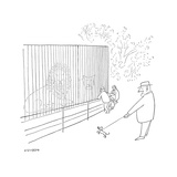 Zoo Animals New Yorker Cartoons