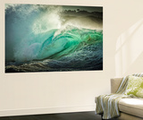 National Geographic Wall Murals