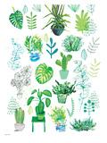New Botanical