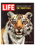Animals (LIFE)