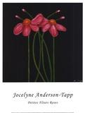Jocelyne Anderson-Tapp