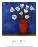 Ann Parr