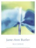 Jane Ann Butler