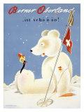 Berner Oberland Snow Ski