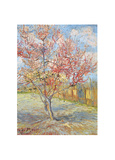 Peach Tree in Bloom at Arles  c1888