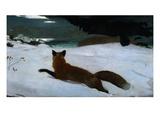 La chasse au renard Giclée par Winslow Homer