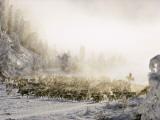 Reindeer Course Through a Siberian Valley