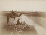 Desert Travelers Bow in Praise to Allah