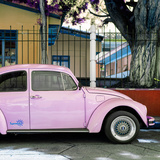 "¡Viva Mexico! Square Collection - ""Summer"" VW Beetle Car V"