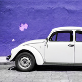 ¡Viva Mexico! Square Collection - White VW Beetle Car & Purple Wall