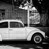 "¡Viva Mexico! Square Collection - ""Summer"" VW Beetle Car II"