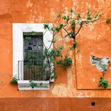 ¡Viva Mexico! Square Collection - Old Orange Facade II
