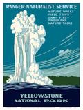 Yellowstone National Park - Old Faithful Geyser - Ranger Naturalist Service