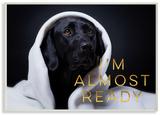 I'm Almost Ready Labrador