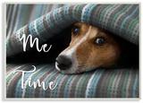 Me Time Snuggley Dog