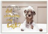 Did Someone Say Bath Bubble Bath Dog