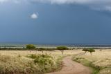 A Rainstorm Approaching in the Masai Mara Plains  Kenya
