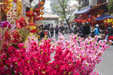 Vietnam  Hanoi Tet Lunar New Year  Cherry Blossoms for Sale
