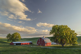 Red Barn at Sunset  Palouse Region of Eastern Washington