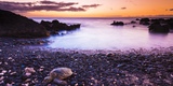 Hawaiian Green Sea Turtles on a Lava Beach at Sunset  Kohala Coast  the Big Island  Hawaii