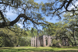 South Carolina  Beaufort County  Old Sheldon Church