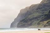 Cliffs at Polihale Beach Polihale State Park  Kauai  Hawaii