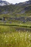 Alaska  Hatchers Pass