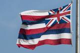 Hawaiian State Flag  Oahu  Hawaii