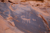 Petroglyphs at Ear of the Wind Arch  Monument Valley Navajo Tribal Park  Monument Valley  Utah