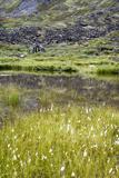 Alaska  Hatchers Pass  Old Mining Cabins