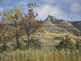 Autumn in the South Unit  Theodore Roosevelt National Park  North Dakota