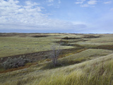 Empty Expanse of the Little Missouri National Grassland  North Dakota