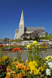 Flowers and St Luke's Anglican Church  Oamaru  North Otago  South Island  New Zealand