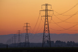 Row of Power Pylons at Sunset  Mid Canterbury  South Island  New Zealand
