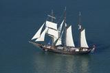 Spirit of New Zealand Tall Ship  Waitemata Harbour  Auckland  North Island  New Zealand