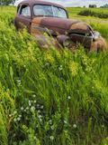 Rusty Old Vehicles in the Ghost Town of Okaton  South Dakota  Usa