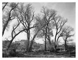 At Taos Pueblo National Historic Landmark, New Mexico, ca. 1941-1942 Reproduction d'art par Ansel Adams