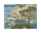 Point Lobos  Carmel  1904