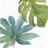 Tropical Blush VII Giclée premium par Lisa Audit