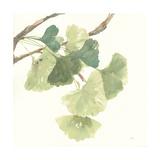 Gingko Leaves I Light